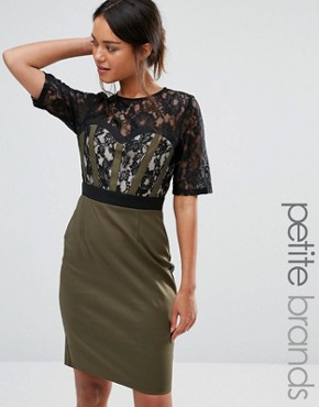 photo Pencil Dress with Lace Bodice and Sleeves by Paper Dolls Petite, color Khaki - Image 1