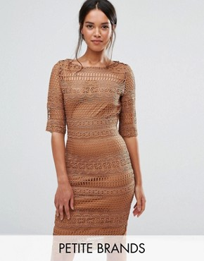 photo 1/2 Sleeve All Over Lace Pencil Dress by Paper Dolls Petite, color Camel - Image 1