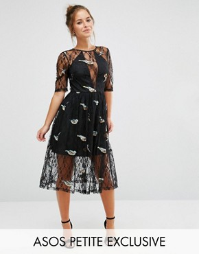 photo Lace Midi Dress with Bird Embroidery by ASOS PETITE, color Black - Image 1