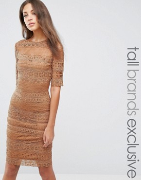 photo 1/2 Sleeve All Over Lace Pencil Dress by Paper Dolls Tall, color Camel - Image 1