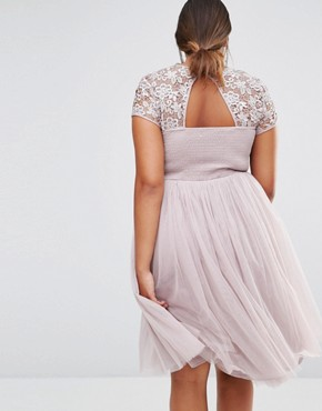 photo Short Sleeve Lace Bodice Midi Dress with Tulle Skirt by Little Mistress Plus, color Pink - Image 2