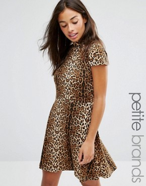 photo Allover Leopard High Neck Skater Dress by Glamorous Petite, color Brown - Image 1