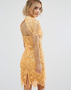 photo Allover Premium Lace Pencil Dress by Paper Dolls Petite, color Mustard Gold - Image 2