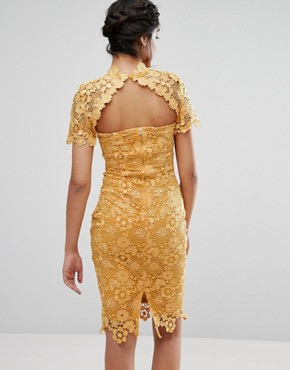 photo Allover Premium Lace Pencil Dress by Paper Dolls Tall, color Mustard Gold - Image 2