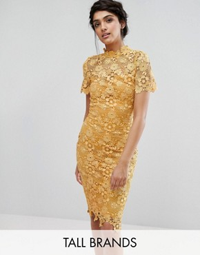 photo Allover Premium Lace Pencil Dress by Paper Dolls Tall, color Mustard Gold - Image 1