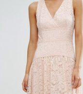 photo Allover Lace Full Prom Maxi Dress by Little Mistress Petite, color Nude - Image 3