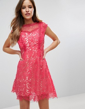 photo Skater Dress In Lace by Little Mistress Petite, color Coral - Image 2