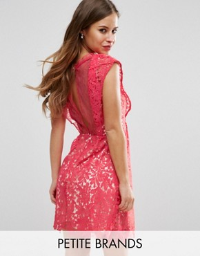 photo Skater Dress In Lace by Little Mistress Petite, color Coral - Image 1