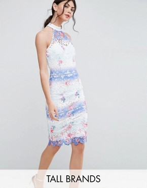 photo High Neck Ombre Lace Pencil Dress by Paper Dolls Tall, color Multi - Image 1