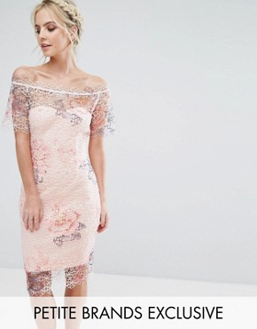 photo Bardot Cutwork Lace Pencil Dress with Floral Print by Paper Dolls Petite, color Multi - Image 1