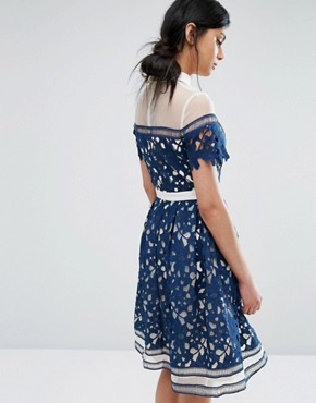 photo Lace Panelled Dress with Contrast Collar by Chi Chi London Premium, color Navy/White - Image 2