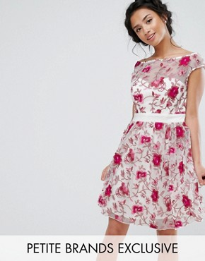 photo Premium Embroidered Skater Dress by Little Mistress Petite, color Multi - Image 1