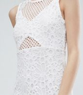 photo Mesh and Lace Pencil Dress by Miss Selfridge Petite, color White - Image 3