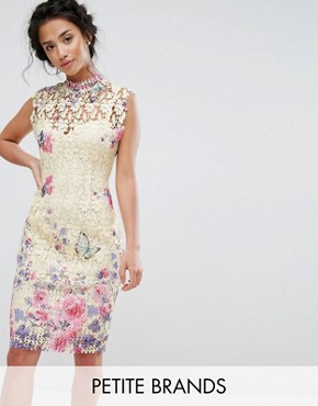 photo High Neck Lace Pencil Dress with Boarder Print by Paper Dolls Petite, color Multi - Image 1