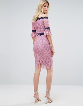 photo Bardot All Over Lace Pencil Dress with Contrast Detail by Paper Dolls Tall, color Mauve - Image 2