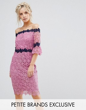 photo Bardot Allover Lace Pencil Dress with Contrast Detail by Paper Dolls Petite, color Mauve - Image 1