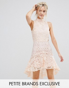 photo Allover High Neck Premium Lace Mini Dress by True Decadence Petite, color Soft Coral - Image 1