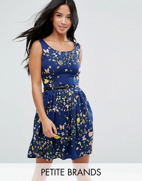 photo Belted Skater Dress in Butterfly Print by Yumi Petite, color Navy - Image 1