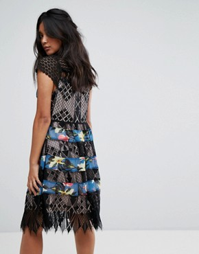 photo Lace & Print Detail Midi Dress by Foxiedox, color Sweetwater Print - Image 2