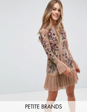 photo Allover Premium Embellished Fluted Hem Detail Skater Dress by Frock and Frill Petite, color Nude - Image 1