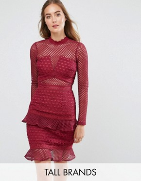 photo All Over Mesh Skater Dress with Ruffle Hem by True Decadence Tall, color Berry - Image 1