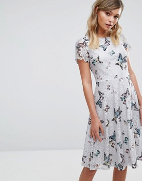 photo Butterfly Print Longer Line Lace Dress by Oasis, color Multi - Image 1
