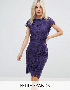 photo Cap Sleeve Lace Dress by Paper Dolls Petite, color Plum - Image 1