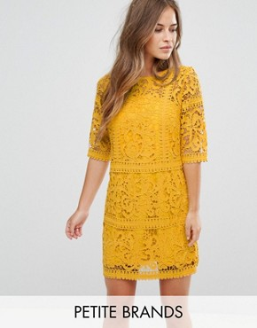 photo All Over Cutwork Lace Mini Aline Dress by Little Mistress Petite, color Ochre - Image 1