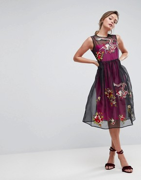 photo Embroidered Mesh Midi Skater Dress with Contrast Lining by ASOS PREMIUM, color Multi - Image 1