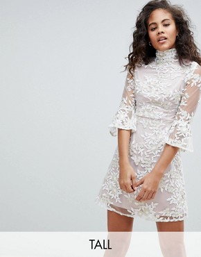 photo Allover Embroidered High Neck Skater Dress with Fluted Hem Detail by Dolly & Delicious Tall, color Cream - Image 1