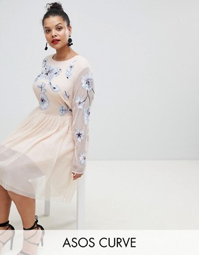 photo Pastel Embroidered Tulle Mini Dress by ASOS DESIGN Curve, color Blush - Image 1