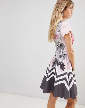 photo Haiilie Skater Dress in Palace Gardens by Ted Baker, color Dusky Pink - Image 2