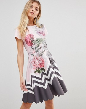 photo Haiilie Skater Dress in Palace Gardens by Ted Baker, color Dusky Pink - Image 1