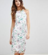 photo Printed Crochet Lace Sleeveless Pencil Dress by Paper Dolls, color Multi - Image 1