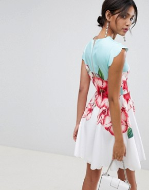 photo Scalloped Skater Dress in Nectar Print by Ted Baker, color Pale Green - Image 2