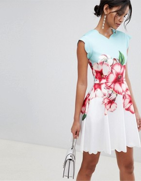 photo Scalloped Skater Dress in Nectar Print by Ted Baker, color Pale Green - Image 1